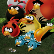 Angry Birds Save