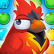 Bravo Birds Online