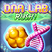 DNA Lab Rush