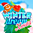 Winter Dream Xmas